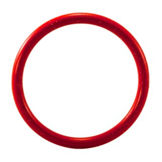 AEG O-Ring Kolben CaFamosa